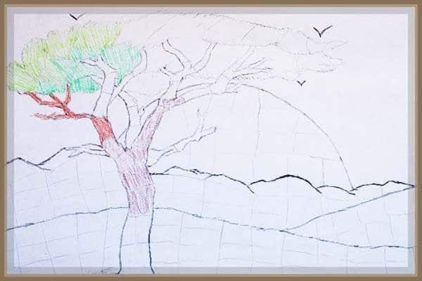 Money tree August
