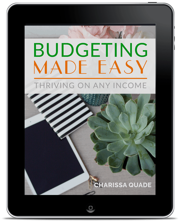 budgeting made easy ipad